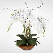 Real Touch Phalaenopsis Silk Orchid Arrangement With Curly