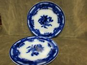 Ca 1850and039s Podmore Walker And Co China Floral Ironstone Flow Blue Amerillia Plates
