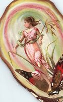 1880's Die-Cut Oyster Shell Fantasy Fairy Butterfly Victorian Trade Card P130