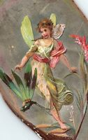 1880's Die-Cut Oyster Shell Fantasy Fairy Dragonfly Victorian Trade Card P130