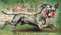 1880's Lovely Dog Running, Christmas Wish Victorian Trade Card P34