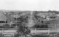 Photo. ca 1910. Roseville, NSW Australia. Sky View of Bancroft Avenue