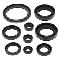Winderosa Engine Oil Seal Kit For Arctic Cat 500 FIS 4x4 w/AT 2002 - 2009 500cc