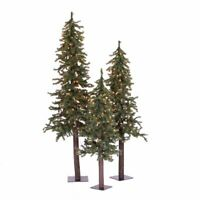 Natural Alpine Tree Set lit by 185 Clear light with three trees sized 2#x27; 3#x27;4#x27;