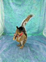 F34 Taxidermy Anthropomorphic Squirrel Cowboy Rifleman Display collectible mount