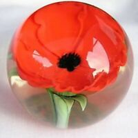 Orient & Flume Red Poppy Signed Paperweight - Stunning!!!
