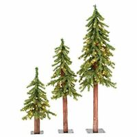 Vickerman Natural Alpine Tree Set lit by 185 Clear lights with three trees size