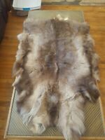 Geniune Animal Pelt Fur Tanned For Rug Wall Hanging Or Craft Elk? 49 inches long