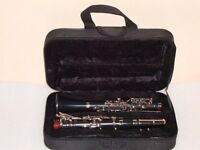 NEW ALBERT SYSTEM Eb FLAT CLARINET 14 KEYS**HIGH GRADE! +FREE CASE+MOUTHPIECE