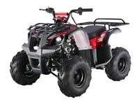 New Bigger Youth Utility ATV With Reverse