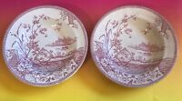 EM & Co Edge Malkin & Co. Cranberry Red Transferware Berry Bowl Circa 1873