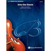 Into the Storm - By Robert W. Smith 00-BFO9814