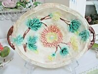 Antique MAJOLICA DISH Chrysanthemum Flowers White Background Earthenware Pottery