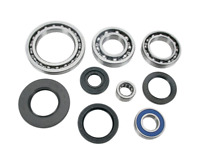 Arctic Cat 400 4x4 VP ATV Rear Differential Bearing Kit 2006