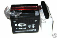 Chinese Atv Quad 12 Volt 5ah Battery COOLSTER 3050B 3050B-2 3050D 110cc Parts