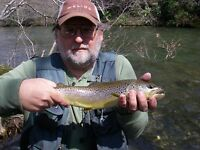Guided Fly-fishing Great Smoky MTN's TN Half Day