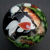 Orient Flume Scott Beyers Beta Fish Art Glass Paperweight Sea Life Coral Signed