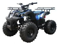 Mid size ATV 125cc Youth ATV  Utility Quad Kids 4 wheeler FREE s/h 125CC ATV