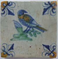 Nice Dutch Delft tile with BIRD in polychrome 17th C.