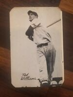 1947 W571 TED WILLIAMS Bond Bread Rare Rounded Corner Version Red Sox HOF
