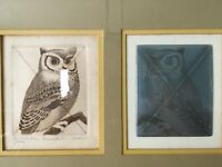 Screech Owl Weller Cancellation Proof Vintage Framed and Matted Pencil Signed