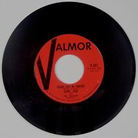 CATHY JEAN amp; THE ROOMATES: Please Love me Forever VALMOR Rock Doo Wop 45 NM
