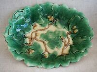 MAJOLICA ETRUSCAN Acorns and Oak Leaves SERVING DISH / BOWL - 12