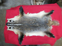 badger fur pelt, good leather, animal hide craft decoration.