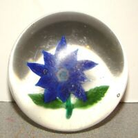 Antique Boston & Sandwich Glass Blue Clematis Poinsettia Paperweight