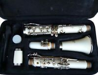 BRAND NEW  WHITE CLARINET W/CASE.APPROVED+ WARRANTY