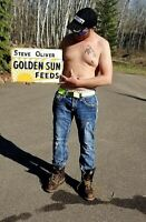 Vintage Metal Golden Sun Feeds Chicken Cattle Cow Pig Horse Seed Corn Farm Sign