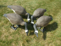 4 CLINTON BIG FOOT CANADIAN GOOSE DECOYS FULL BODY MOVABLE HEADS (USED)