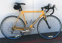 Cycling Any Time | Cannondale 54cm Review