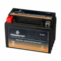 YTX9-BS ATV Battery for HONDA TTRX250X, TRX250EX, TE, TM 250CC 2001-2019