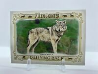 2021 Allen amp; Ginter Rallying Back singles *Free Shipping* $0.99