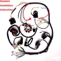 COMPLETE ELECTRICS WIRING HARNESS FOR CHINESE DIRT BIKE ATV QUAD 150-250CC 300CC