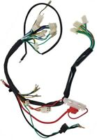 WIRING HARNESS 50CC-110CC 2 HEADLIGHT CHINESE ATV COOLSPORT COOLSTER JCL JETMOTO