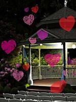 VALENTINES DAY OUTDOOR HOLIDAY PROJECTOR DECORATION LIGHTS HEARTS Yard 12 SLIDES