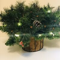 Bethlehem Lights Canterbury Hanging Basket with Pinecones CLEAR LIGHTS H208931