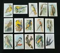 Vintage Set Church amp; Dwight Useful Birds of America 15 Cards Tenth 10 Series