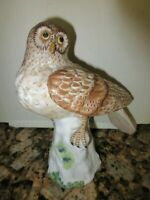 HAWK OWL CROWN STAFFORDSHIRE 57 Bird Figurine Statue Doubell Miller Hand Painted