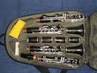 Klarinette Clarinet  in A & in Bb (wood) : Selmer Recital (18/6) Paris France