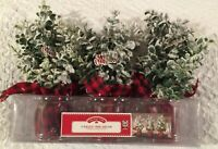 SET OF 3 HOLIDAY TIME BOXWOOD CHRISTMAS TREES WITH PLAID BASE EXPEDITED SHIPPING