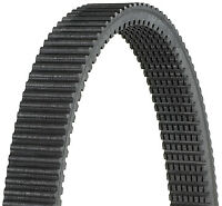 Dayco HPX2204 High Performance Extreme Drive Belts Automotive Accessories