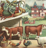 DOMESTIC SEWING TRADE CARD FARM HOUSE MANY ANIMALS FARMER OUT IN FIELD X64