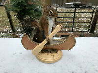 TAXIDERMY VERY NICE Canoeing GREY SQUIRREL MOUNT LOG CABIN HUNTING LODGE DECOR
