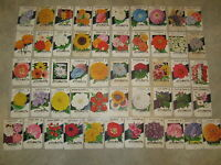 Lot of 51 Old Vintage 1940's - 1950's - FLOWER SEED PACKETS - Lone Star - EMPTY