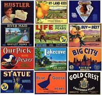 Collection of 12 Different Pear Box Label, **ORIGINAL FRUIT CRATE LABELS**