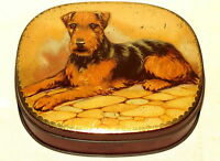 Dainty Dinah Fox Terrier Dog Toffee Candy Tin 1920s