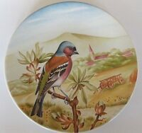 Vintage ANTIQUE French  Sarreguemines  Plate  Perched Bird Countryside  7  3/8